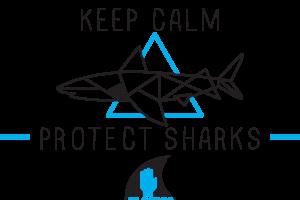 Requin Origami Ailerons