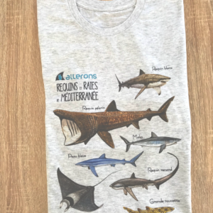 requin dessins tshirt